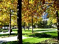 NYC - Autumn at the National September 11 Memorial - panoramio (1).jpg