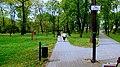 Nakło nad Notecią Park im. Jana III Sobieskiego Polska - panoramio (4).jpg
