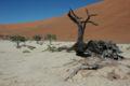 Namibie Sossusvlei 11.JPG