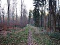 Naturpark Schönbuch - panoramio (12).jpg