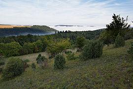 Naturschutzgebiet Apfelberg.jpg