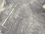 Nazca Lines Hummingbird (cropped).jpg