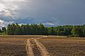 Near Pilviskiai, Lithuania, 12 Sept. 2008 - Flickr - PhillipC.jpg