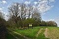 Nekhvoroshcha Volodymyr-Volynskyi Volynska-Nekhvoroshschi nature reserve-view with information board.jpg