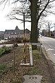 Neu-Moresnet Aachen - Grenze.jpg