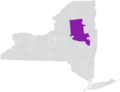 New York State Senate District 49 (2012).png
