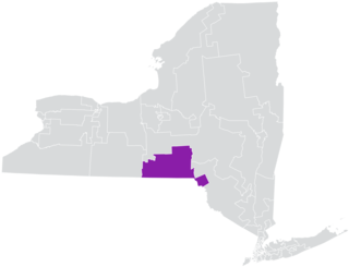 New Yorks 52nd State Senate district