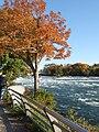 Niagara Falls 2008 PD 74.JPG