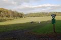 Nidda Michelnau Heissbachgrund NR 163617 Pasture b.png