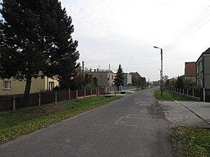 Niwki, Strzelce County - Image: Niwki (powiat strzelecki), cesta
