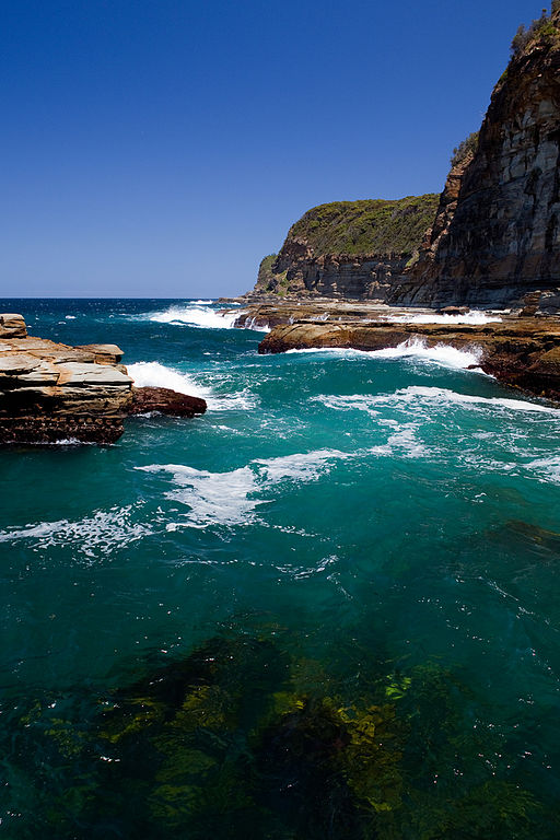 North Avoca Beach, Gosford, NSW Australia (3186683463)