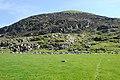 Northern slopes of Moelfre - geograph.org.uk - 1298609.jpg
