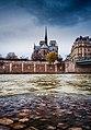 Notre Dame depuis le Quai d'Orléans, @A.P Photography, 2018.jpg