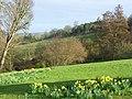 Nuneham Park - geograph.org.uk - 717148.jpg