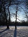 Oberhausen-Alstaden - Winter im Ruhrpark - 09.01.09 - panoramio - giggel.jpg