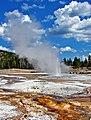 Old Faithful Basin, Yellowstone NP 9-11 (15270856295).jpg