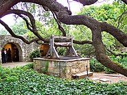 Old well and oak tree in Alamo courtyard, San Antonio, Texas, June 4 2007