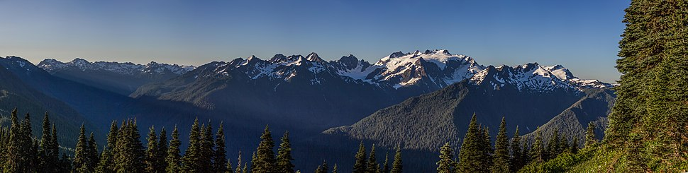 The Olympic Mountains seen from the High Divide.