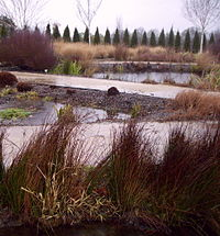 Oregon Garden water maze 2007-12-23 15-35-23 0081.jpeg