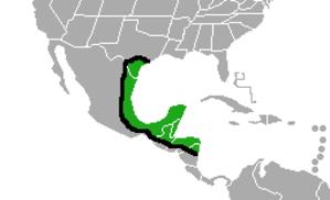 Plain chachalaca - Image: Ortalis vetula map