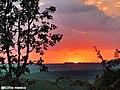 Pôr do Sol no cerrado mineiro - panoramio.jpg