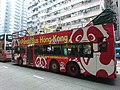 Panda Bus Hong Kong No. 22 (2).JPG