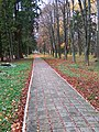 Park in sanatorium of Khmilnyk (Oct 2018) 04.jpg