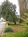 Parvillers-le-Quesnoy (Somme) France (3).JPG