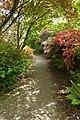 Path (47003431194).jpg