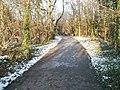 Path to Iron Bridge Road - geograph.org.uk - 2183316.jpg