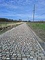 Pavé du Petit Gibus - panoramio.jpg