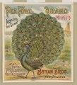 Pea Fowl brand molasses. Bryan Bros. New Orleans LCCN2003667056.tif