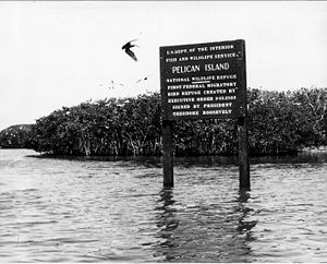 History of the National Wildlife Refuge System - Pelican Island NWR