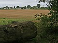 Pepperstock - Downlands Park - geograph.org.uk - 231731.jpg