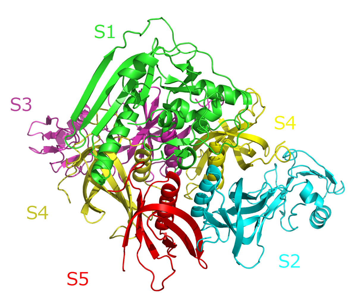 read Molecular Diversity in Drug Design