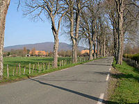 Petitefontaine-90-route.JPG