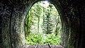 Pfälzer Wald durch Tunnelportal.jpg