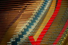 Piano strings 3.jpg