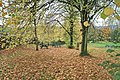 Picnic Area, Barley Car Park - geograph.org.uk - 1569297.jpg