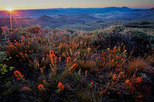 Pine Forest Range - Image: Pine Forest Range, BLM Nevada