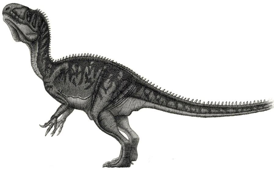 Piveteausaurus divesensis jmallon