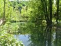 Plitvice lakes (51).JPG