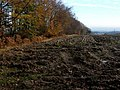 Ploughed field near Torwood Castle - geograph.org.uk - 1588177.jpg