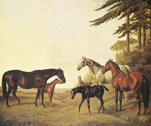 Pocahontas (horse) - Image: Pocahontas And Stockwell