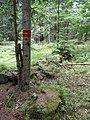 Pod Farským lesem 15.jpg