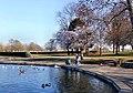 Pontefract Park lake (geograph 6148017).jpg