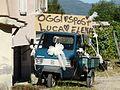 Ponzano Magra-santuario ns delle grazie-ape sposi.jpg