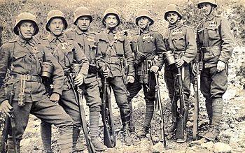 Резултат с изображение за AUSTRIAN army in wehrmacht Second world war