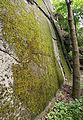 Prokop valley 4.jpg