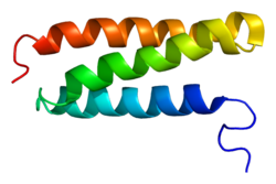 Protein VPS4B PDB 1wr0.png